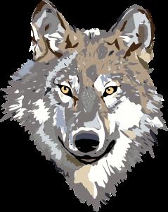 wolf-30695_1280