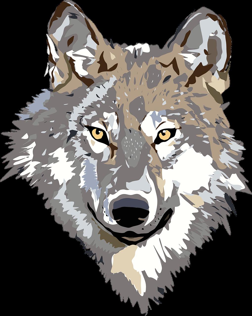 piger søger mænd ulve wiki